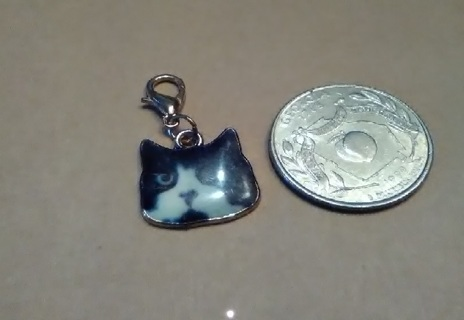 #4-Cat Charm with Latch