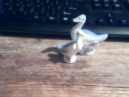 2- China mini geese