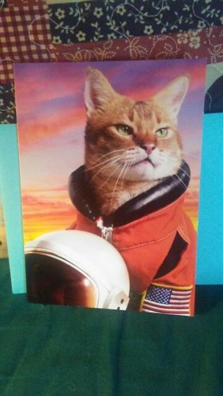 SPACE CAT-STRONAUT FATHERS DAY CARD