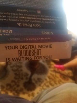 New bloodshot movie