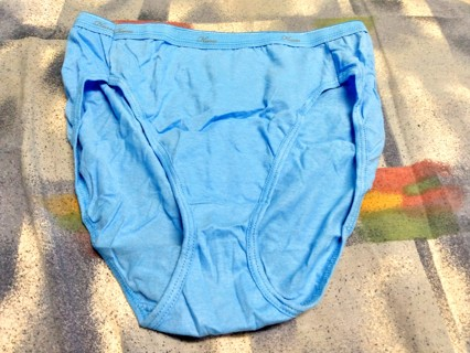 Women's New Hanes Pantie - size 7/Large