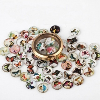 [GIN FOR FREE SHIPPING] 20PCS Fix DIY Colorful Butterfly Floating Charm Glass Locket