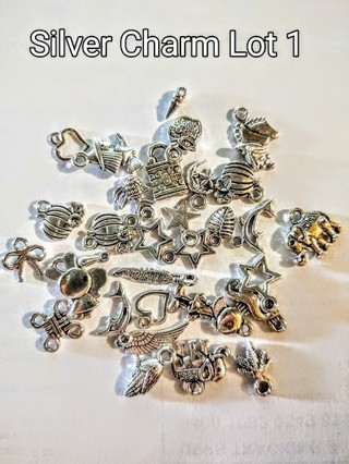 Silver Charms By The Lot
