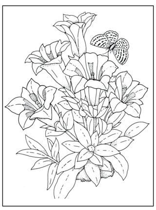 •❤️ (New) Asst. Adult Coloring Sheets (Qty. 6) ❤️•