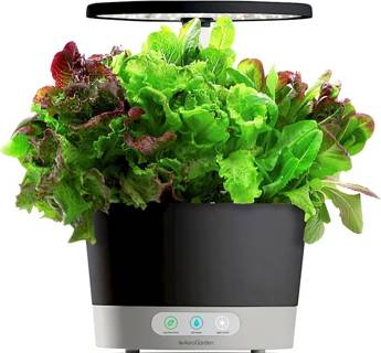 AeroGarden - Harvest 360 6-Pod with Gourmet Herb Seed Pod Kit - Black