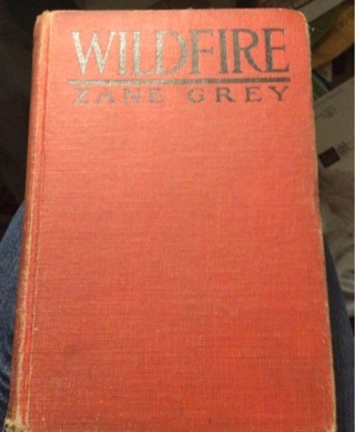 Antique (1917). Zane Grey,  Wildfire