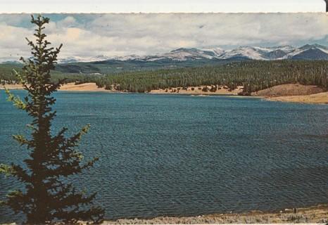 Vintage Unused Postcard: Meadow Lark Lake, WY