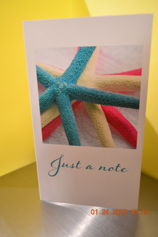 "****GORGEOUS ""JUST A NOTE"" BLANK CARD W/ENVELOPE***FREE SHIPPING"