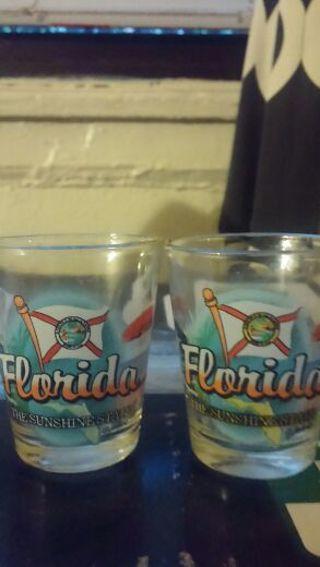 """""""Florida the sunshine state"""" Shot Glasses"""