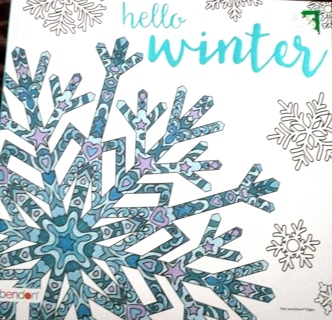"Adult Coloring Book..""Winter"""