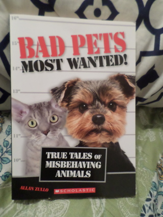 Bad Pets Most Wanted Book