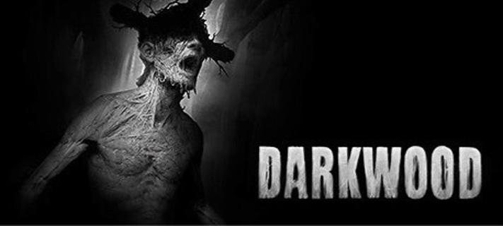 Darkwood Steam Key