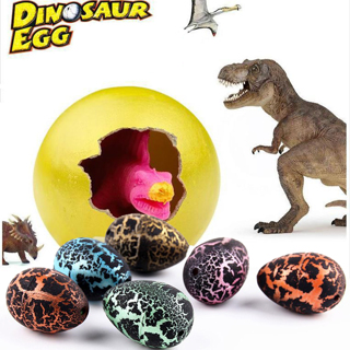 Free Shipping!! 5 Pieces Of Dinosaur Eggs!! (New!!)