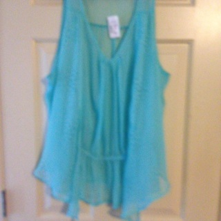 NWT turquoise sheer top