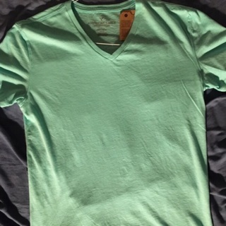 New W/ Tags Mint American Eagle V Neck Shirt Small