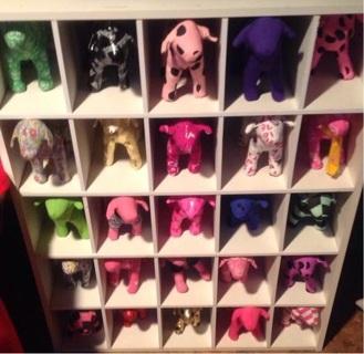 Victoria Secret Dogs!