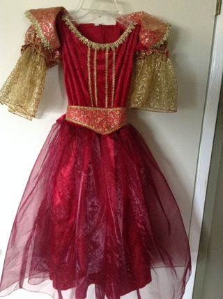 costume GORGEOUS princess dress girl size 7 / 8 - new with tags halloween