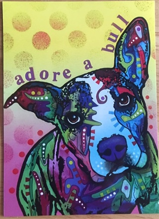 """ADORE A PIT BULL - 4 x 5"""" MAGNET"""