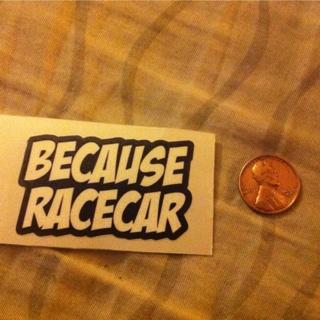 Because Racecar Vinyl Sticker