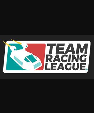 Team Racing League steam key