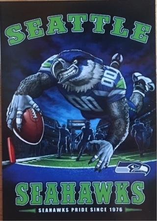 """SEATTLE SEAHAWKS NFL - 2 x 3"""" MAGNET"""