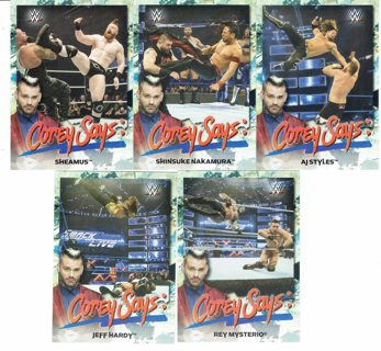5-WWE CARD LOT (2019)