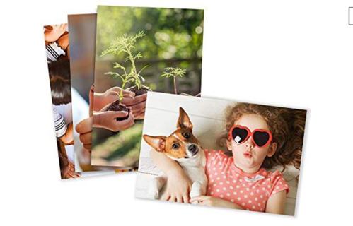 Five Photo Prints Standard Size 4x6 Matte Finish