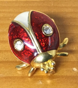 Rhinestone Lucky Ladbug Brooch/Pin