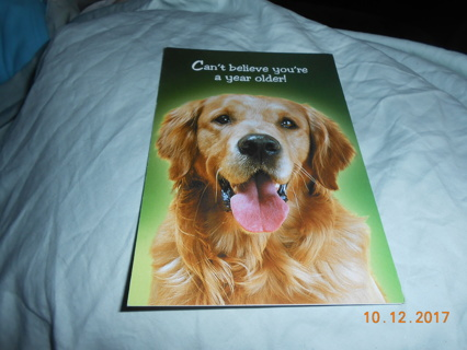 1 Birthday Card with a Golden Retriever Dog photo real