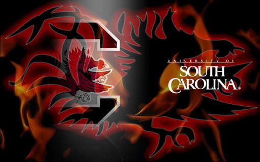 FREE South Carolina Gamecocks Desktop Wallpaper