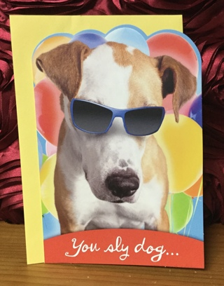 Dog with Sunglasses Birthday Card with Envelope